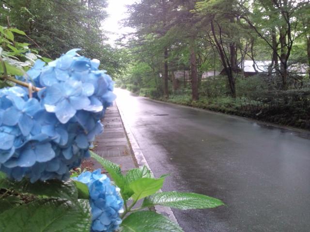 軽井沢雨1